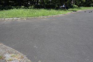 大島小松川公園の道