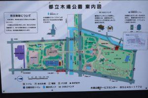 木場公園案内図