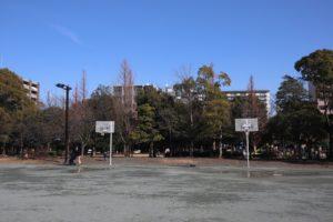 木場公園バスケゴール