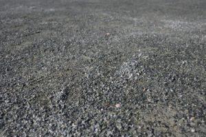 木場公園の地面