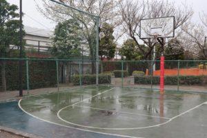 お台場レインボー公園バスケットコートの特徴