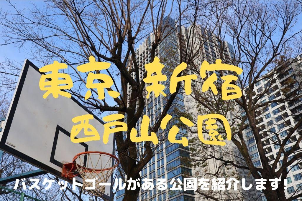 バスケットゴールがある公園を紹介【新宿区立 西戸山公園】